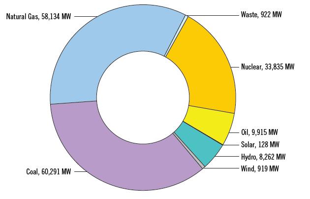 PJM Existing Generation Fuel Mix - RPM-Eligible Capacity Rights (Dec. 31, 2015)